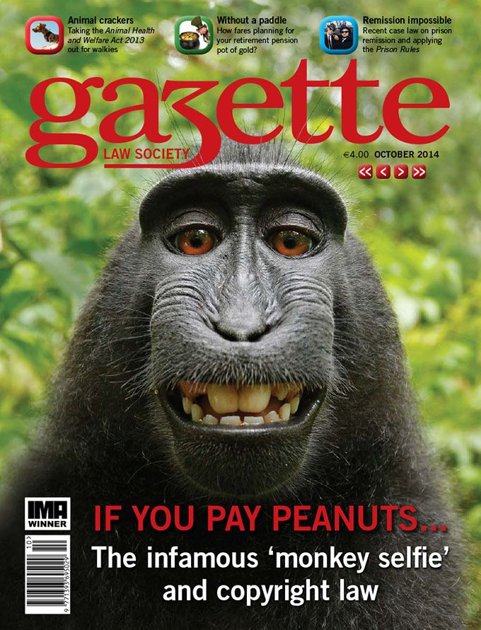 If you pay peanuts...The infamous 'monkey selfie' and copyright law